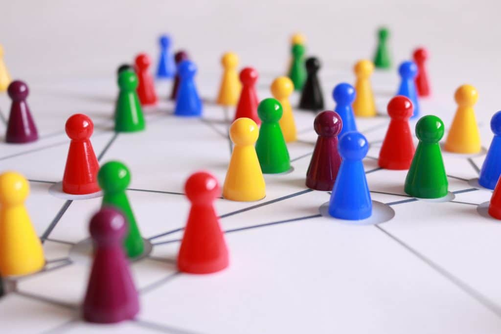 estructure of team